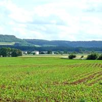 2ème édition journée santé environnement à la Colline de Sion-Cité des paysages de Meurthe-et-Moselle-CLS Terres de Lorraine
